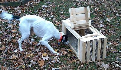 Pheasant.Cage.Dog.Training. TWO.UNITS FOR Transfer of live.Birds/MADE IN U.S.A.